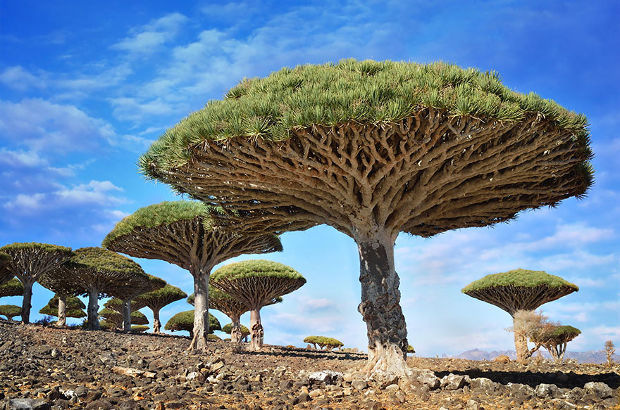 alien-places-look-like-other-worlds-22__880.jpg