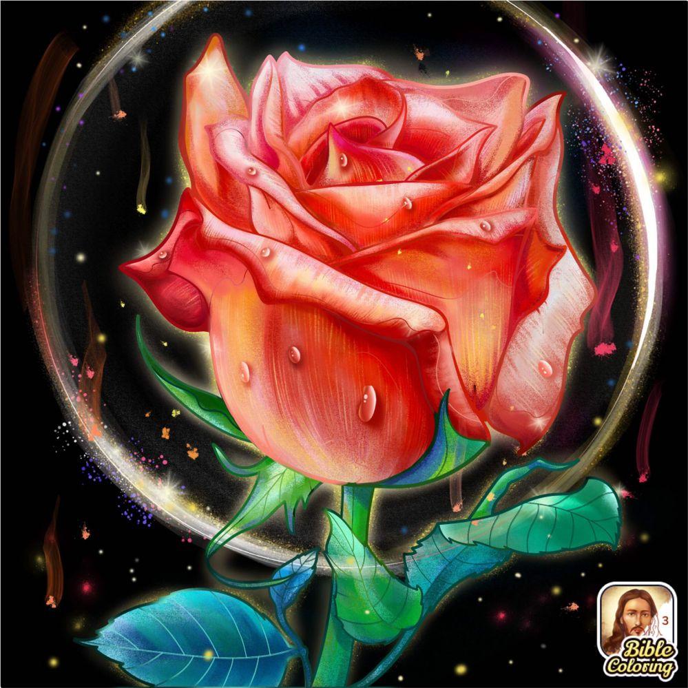 I like this Rose... :)