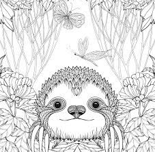 I found a mindful colouring sloth