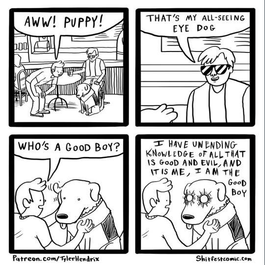 puppy meme for ro.JPG