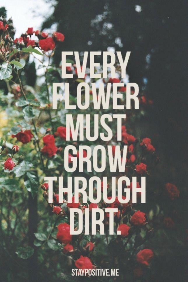 flowerdirt