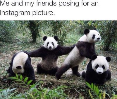 Best-Friend-Memes.jpg