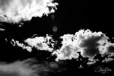 IMG_6850 white.jpg