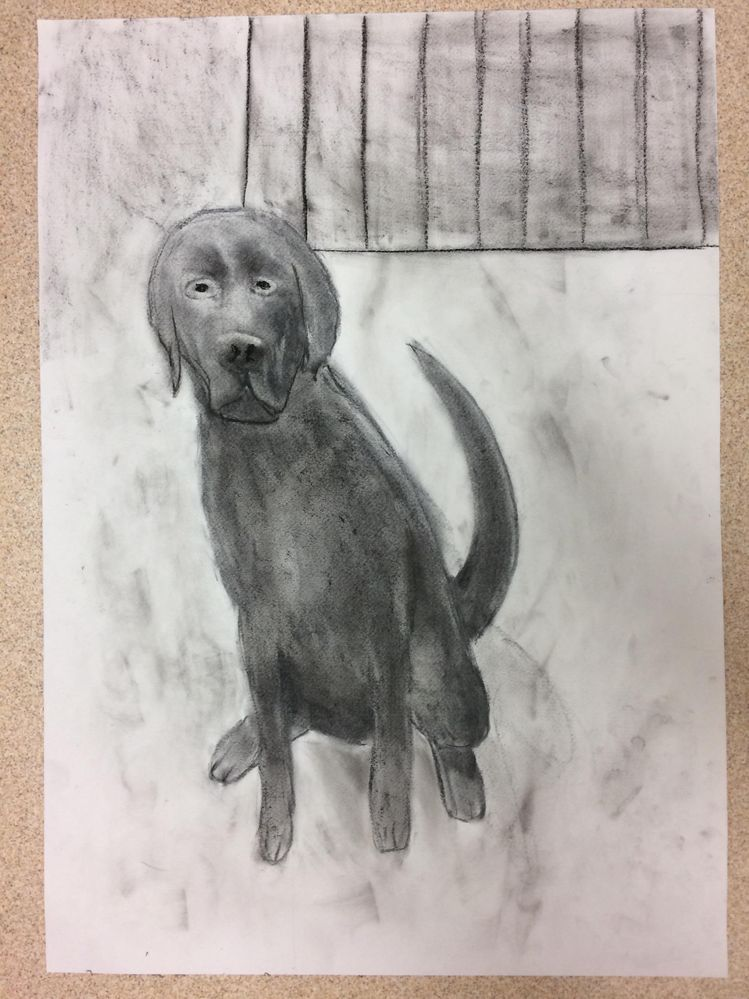 Have a charcoal pupper!