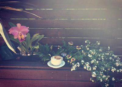 Coffee photo Janine .png