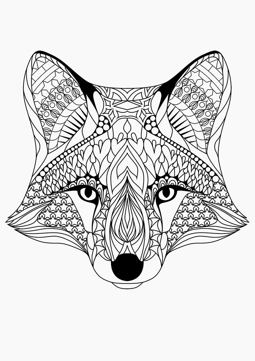 6e7c6-fox2.png