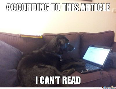 dog-on-laptop_o_2087591.jpg
