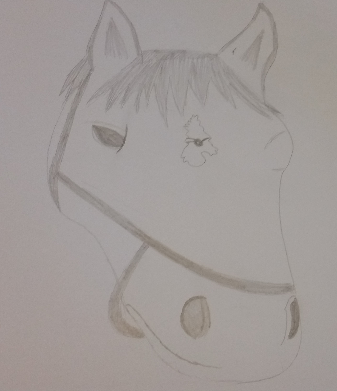 grey horse head.jpg